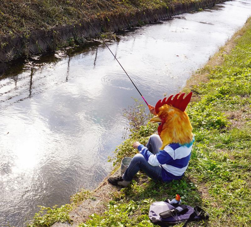 秋のタナゴ釣り